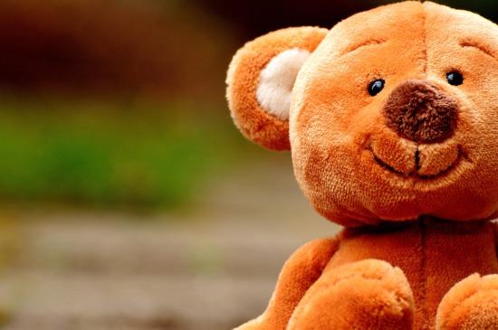 teddy-2439162_1920
